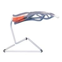 Model vinger  Interne structuur
