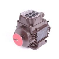 3-Fase motor
