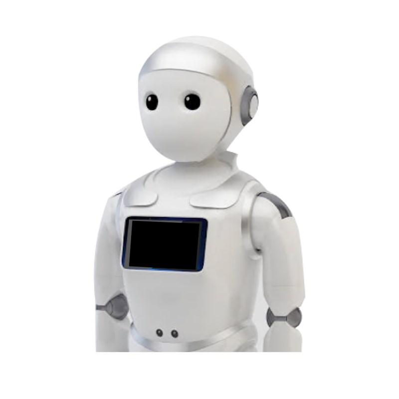Ipal onderwijsrobot zilver