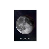 Curiscope Multiverse AR Poster - Maan