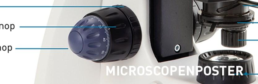 Gratis microscopenposter